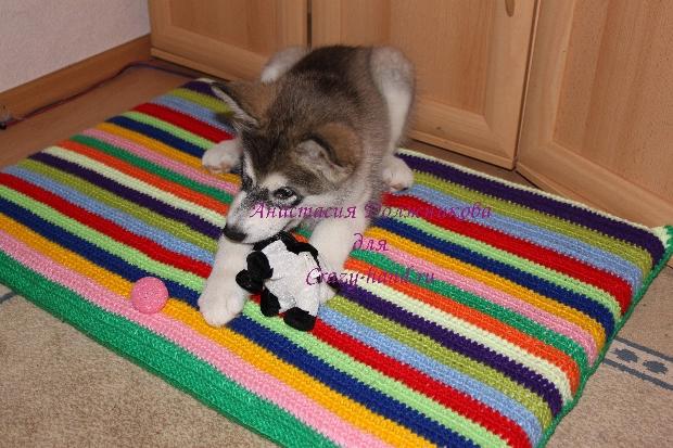 Связать лежанку для кошки своими руками 16