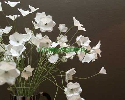 white-flowers8