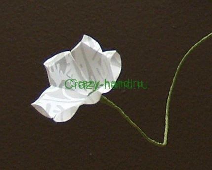 white-flowers3